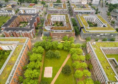 Weststadt Essen